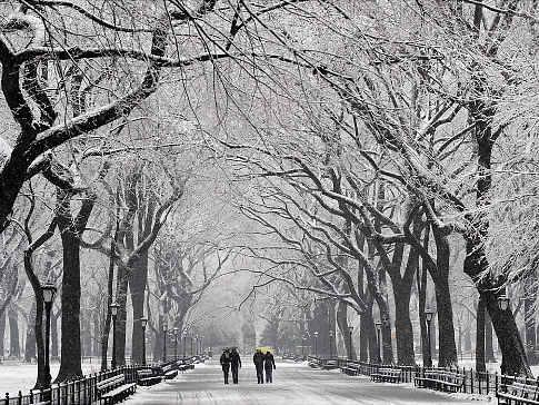 central_park_snow