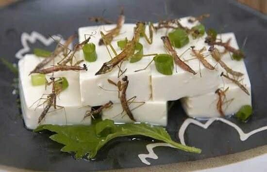 tofu cu greieri