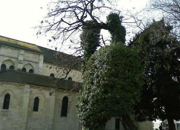Paris5_Saint-Julien-le-Pauvre _Robinier1602_Mars10
