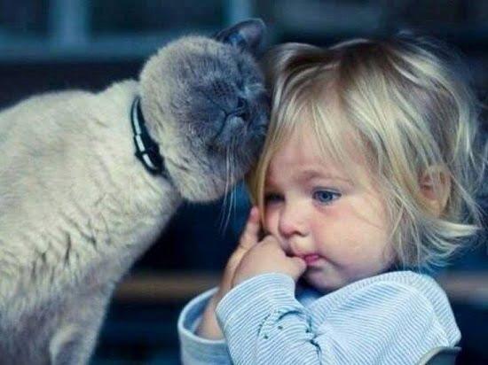 pisica - copil