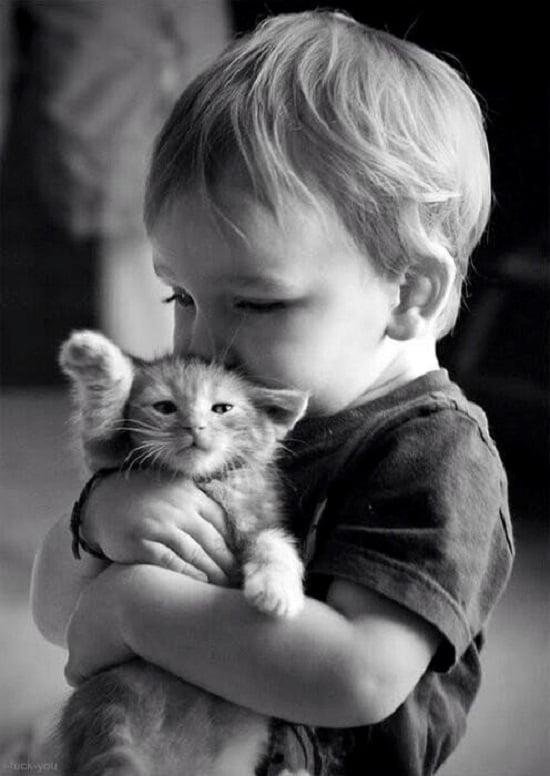 pisica copil
