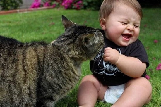 pisica se joaca cu copil