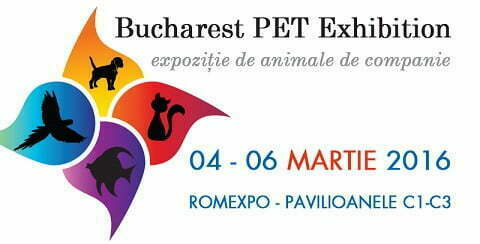 800 x 407 px - Pet Exhibition 2016 - RO