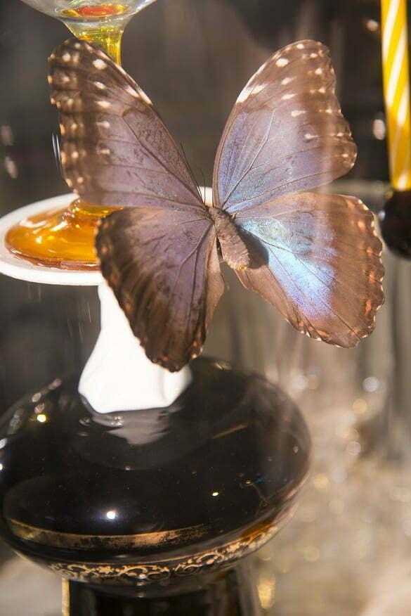 fluturi 2