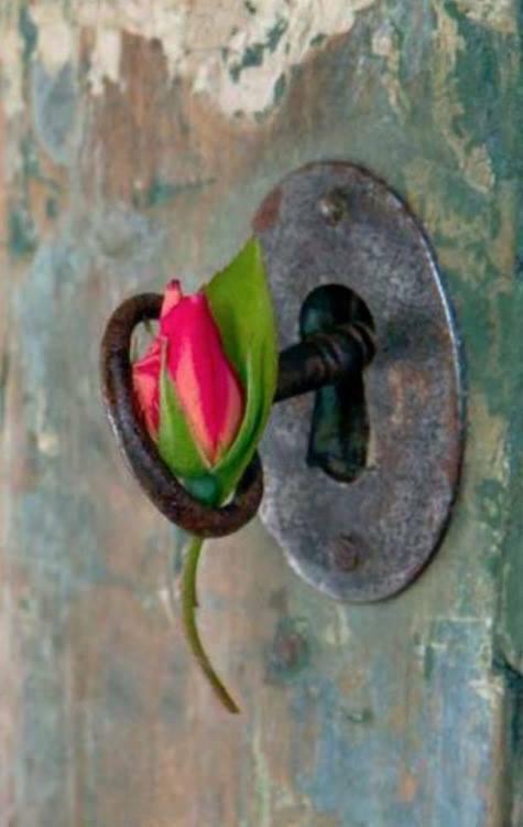 cheie, floare