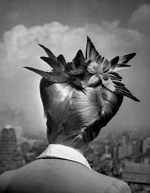 nina_leen_bird_hairstyle