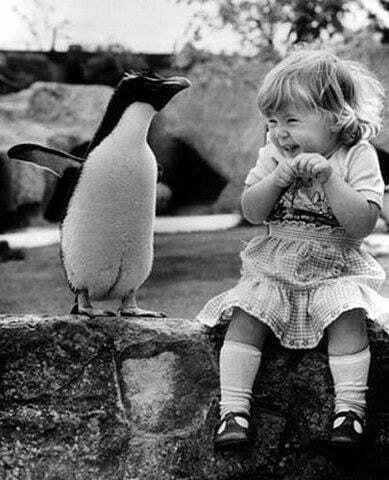 copil pinguin fericire