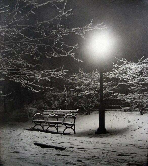 parc felinar noapte