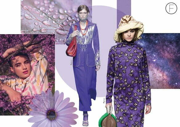 xcollage-purple1.jpg.pagespeed.ic.aDJs8oPIZF