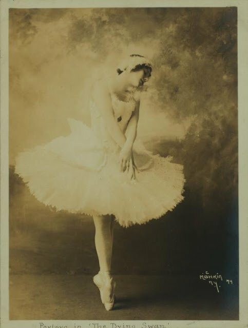 Anna Pavlova, costumed as The dying swan (4)