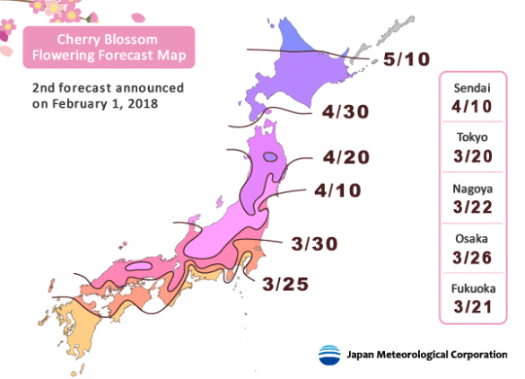 cherry-blossom-forecast-japan-2018-1
