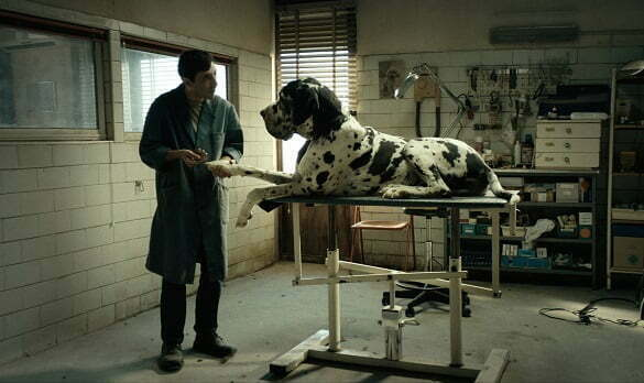 Dogman-film still