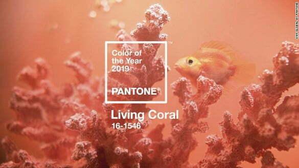 181205170540-pantone-color-of-year-01-exlarge-169