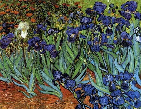 irises_vangogh