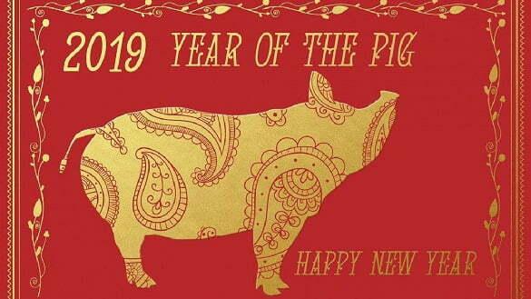 anul porcului 2019