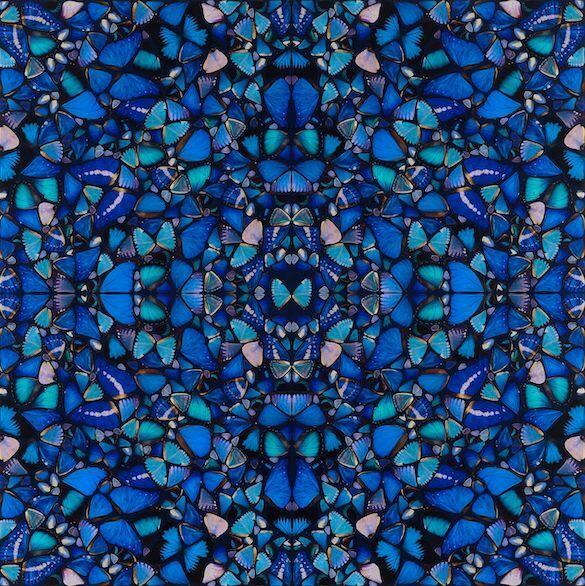 """H6-1 Mercy by Damien Hirst Damien Hirst descrie fluturele ca pe un """"declanșator universal"""": oricine se teme de sticlă, de rechini, dar toată lumea iubește fluturii. În lucrarea 'The Aspects', Hirst aranjează imaginile fluturilor într-un tipar de caleidoscop. Perfecta simetrie a aripilor seamănă cu vitraliile arhitecturii gotice și cu tiparele circulare ale mandalelor. Pentru Hirst fluturele înseamnă o reprezentare spirituală, folosită prima dată de greci pentru a portretiza sufletul și mai târziu în simbolistica creștină pentru a simboliza învierea."""